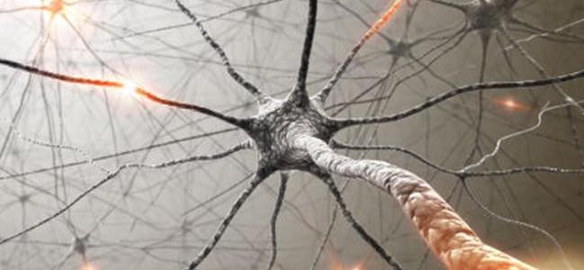 La Sclerosi Multipla e le altre malattie demielinizzanti